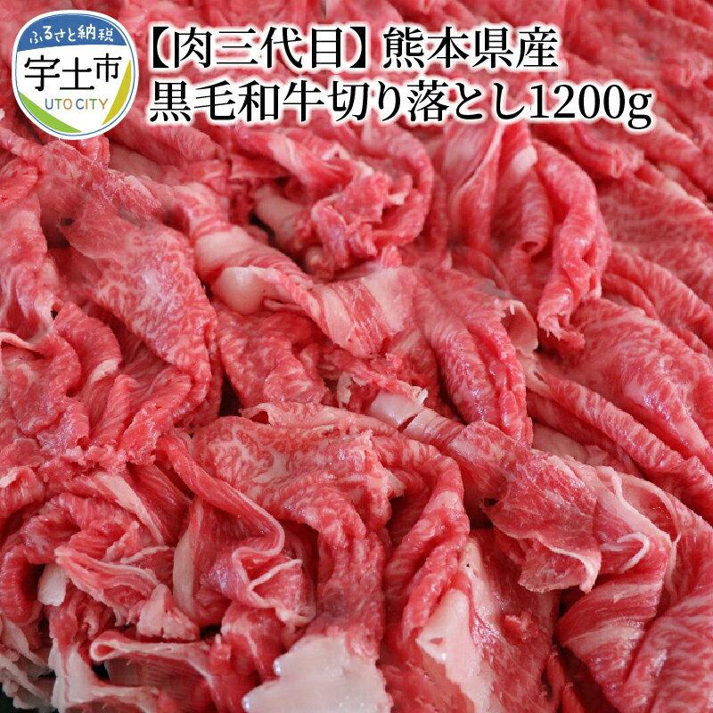 肉三代目 熊本県産 黒毛和牛切り落とし1200g【熊本県宇土市】