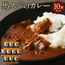 【ふるさと納税】馬スジのカレー 10食セット 合計2.1kg