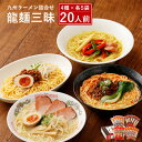 【ふるさと納税】龍麺三昧 ラーメンセット 4種 各5本 合計