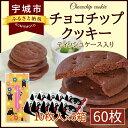 【ふるさと納税】チョコチップクッキー ティッシュケース入り 60枚 スイーツ お菓子 熊本菓房 送料無料
