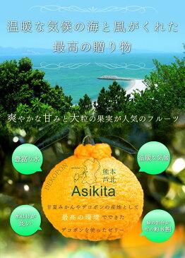 【ふるさと納税】芦北のデコポンゼリー 12個 でこぽん 熊本 フルーツ 熊本菓房 送料無料