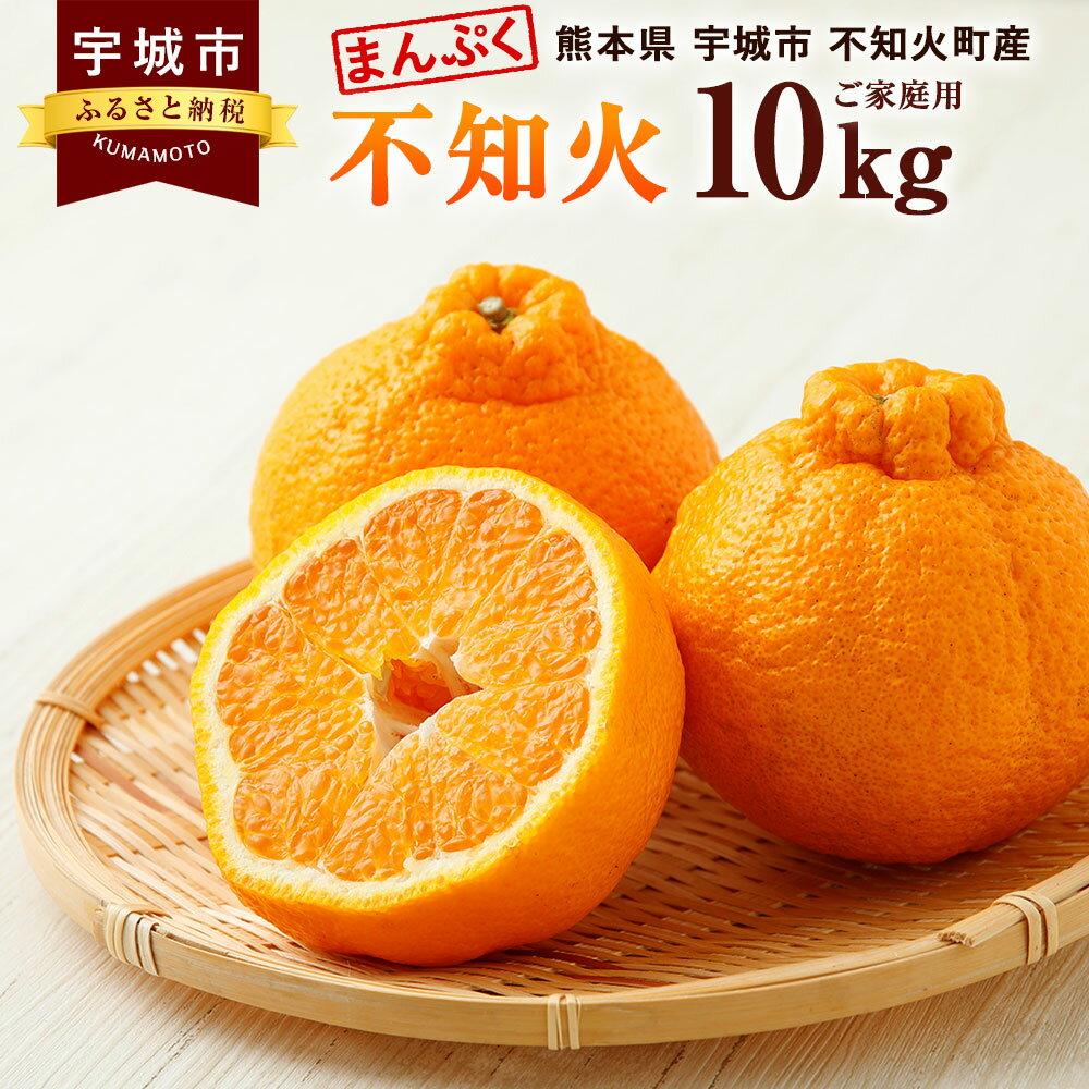 まんぷく不知火(ご家庭用) 約10kg 御舩果樹園 熊本県産 ご家庭用 みかん フルーツ 柑橘 デコポンと同品種 訳あり 送料無料