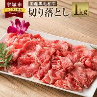 【ふるさと納税】国産 黒毛和牛 切り落とし 1kg 牛肉 お肉 冷凍 九州産 送料無料
