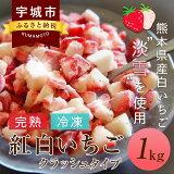 【ふるさと納税】完熟冷凍紅白いちごクラッシュタイプ