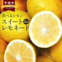 【ふるさと納税】 食べるレモン スイートレモネード 2kg ...