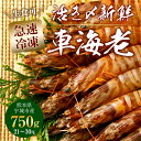 【ふるさと納税】熊本県産 急速冷凍 車海老 750g(21〜...