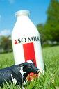 【ふるさと納税】牛乳900ml×3本セット