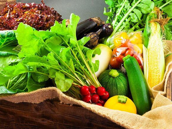 熊本県阿蘇市の返礼品、産地直送お野菜セットです。  阿蘇市の農家さんたちが丹精込めて作った新鮮お野菜を、旬の季節の組み合わせで届けてもらえます。秋なら、キャベツ、ゴボウ、サトイモ、ニラ、セロリ、ナス、オクラ、トマト、タマネギ、サツマイモ、ハクサイ、ぶどうなどから5~10品程度。申し込んだ時期によって、どんなお野菜が届くか変わってきます。到着を待つワクワク感もたまりませんね。