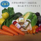 【ふるさと納税】天草旬の野菜(7〜10品目)&加工品 オリジナルセット