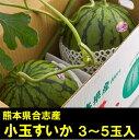 【ふるさと納税】小玉すいか3〜5玉入(品種:ひとりじめ 1玉...