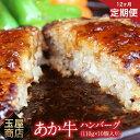 【ふるさと納税】【12カ月定期】熊本の和牛 あか牛ハンバーグ...