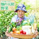 【ふるさと納税】いちど食べてみて「畑の天使」野菜 安全安心 おまかせ 詰め合わせ セット 旬の野菜 季節 生産者 有機 送料無料 冷蔵
