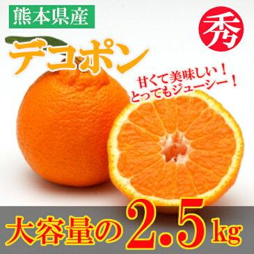 【ふるさと納税】熊本県産 デコポン(約2.5kg)