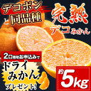 【数量限定】生産量日本一!デコポンと同品種!熊本県産デコみか...