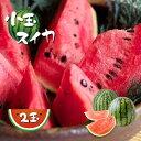 【ふるさと納税】 小玉スイカ2玉  スイカ すいか 果物 フルーツ 国産 熊本県和水町