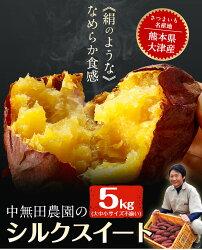 【ふるさと納税】熊本県大津町産 中無田農園のシルクスイート 約5kg(大中小サイズ不揃い)《12月上旬-12月末頃より順次出荷》 さつまいも 芋 スイートポテト 干し芋にも 特産品・・・ 画像1