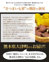 【ふるさと納税】熊本県大津町産 中瀬農園のベニーモ 約3.5kg(大中小サイズ不揃い)《11月中旬-12月上旬頃より順次出荷》 さつまいも 芋 紅はるか スイートポテト 干し芋にも 特産品・・・ 画像2