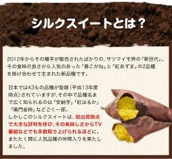 【ふるさと納税】熊本県大津町産 中無田農園のシルクスイート 約5kg(大中小サイズ不揃い)《12月上旬-12月末頃より順次出荷》 さつまいも 芋 スイートポテト 干し芋にも 特産品・・・ 画像2