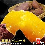 【ふるさと納税】熊本県大津町産 中瀬農園のベニーモ 約5kg(大中小サイズ不揃い)《4月中旬-5月中旬頃より順次出荷》 さつまいも 芋 紅はるか スイートポテト 干し芋にも