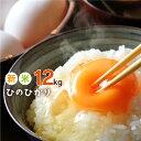 【ふるさと納税】熊本県産 ヒノヒカリ 12kg (6kg×2