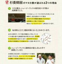 【ふるさと納税】杉養蜂園阿蘇みつばち牧場マヌカ蜜500g+みつろう体験チケット