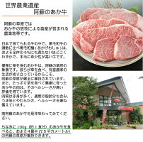 【ふるさと納税】くまもとあか牛ステーキ2枚+焼肉用300g+スライス400gのロースセット計1.1kg