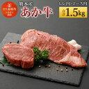 【ふるさと納税】熊本産 ステーキ用 あか牛 ヒレ肉4〜5枚(