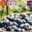 【ふるさと納税】熊本産 大粒 冷凍 ブルーベリー 1kg 大...