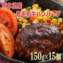 【ふるさと納税】15個入り!!熊本県産 黒毛和牛 ハンバーグ...