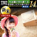 【ふるさと納税】【令和3年度産 新米】熊本県産 無洗米 14kg 甲佐米(7kg×2袋)