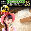 【ふるさと納税】【先行予約】【令和3年度産 新米】熊本県産 15kg 甲佐米(5kg×3袋)×3ヶ月 [AP031]