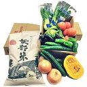 【ふるさと納税】矢部米と山都産高冷地新鮮野菜詰合せ 【お米・野菜・セット・詰合せ】