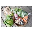 【ふるさと納税】★四季を味わう野菜セット★ 【定期便・野菜・...
