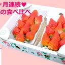 【ふるさと納税】【定期便3ヶ月】なかはた農園のイチゴ3種類食...