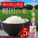 【ふるさと納税】熊本県産 ヒノヒカリ棚田の米5kg