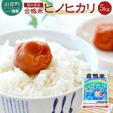 【ふるさと納税】熊本県産「合鴨米」ヒノヒカリ5kg
