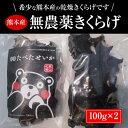 【ふるさと納税】熊本産乾燥きくらげ 100g×2