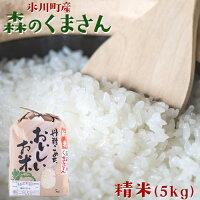 【ふるさと納税】森のくまさん精米5kg熊本県氷川町産お米精米《9月下旬〜7月末頃から順次出荷》