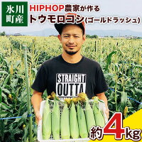 【ふるさと納税】HIPHOP農家が作るトウモロコシ(ゴールドラッシュ)約4kg熊本県氷川町産中村農園《6月上旬-7月下旬頃より順次出荷》
