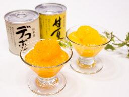 【ふるさと納税】デコポン、甘夏缶詰(48缶)