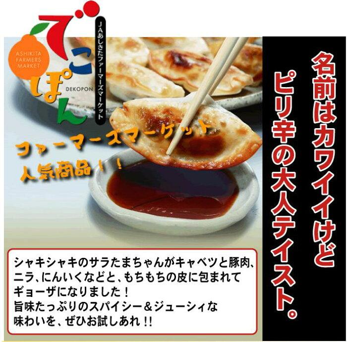 【ふるさと納税】サラたまちゃんギョーザ70個