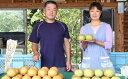 【ふるさと納税】本村果樹園 にしき梨(5kg) 【梨・ナシ・...