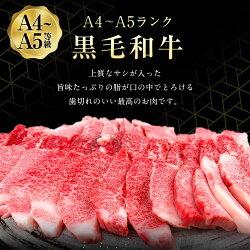【ふるさと納税】黒毛和牛 A4 A5 カルビ焼肉 300g×2パック 合計600g 焼き肉 カルビ 焼肉 和牛 牛 牛肉 肉 お肉 A4ランク A5ランク 国産 送料無料・・・ 画像2
