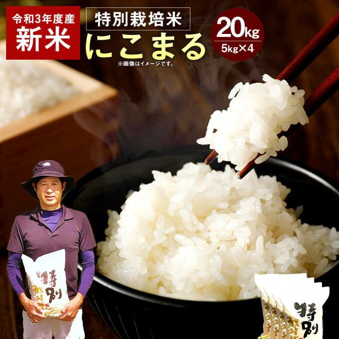 【ふるさと納税】【令和3年産 新米】予約受付中 相良村産 特別栽培米 にこまる 20...