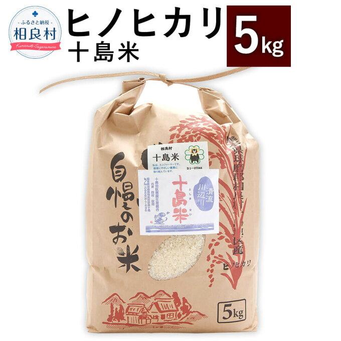 【ふるさと納税】十島米 5kg ヒノヒカリ 令和2年産 米 白米 お米 ご飯 精米 ...
