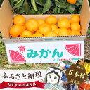 【ふるさと納税 果物】No.079 熊本産フルーツ☆みかん青...