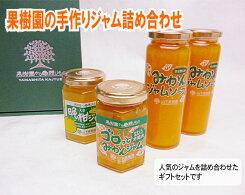 【ふるさと納税】No.024果樹園の手作りジャム詰合せ