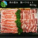 【ふるさと納税】米の恵み 豚バラセット 約1kg A02012【大分県大分市】