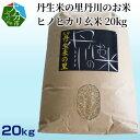 【ふるさと納税】丹生米の里丹川のお米 ヒノヒカリ玄米 20k