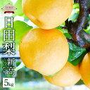 【ふるさと納税】【期間限定】日田梨 新高 5kg にいたか なし 果物 くだもの フルーツ 果実 九...